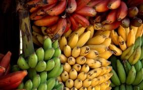 Bananer till försäljning i Mto Wa Mbu, Lake Manyara